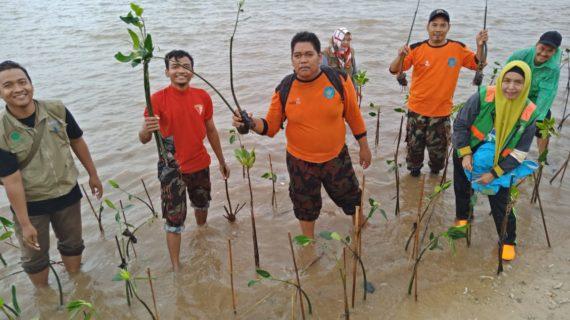 Relawan Muhammadiyah Jepara Ambil Bagian Tanam Pohon Mangrove