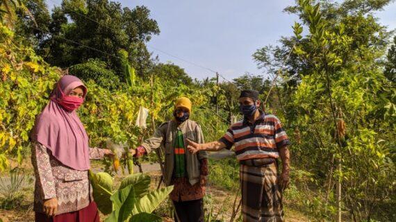 Relawan Aisyiyah Jelajah Kampung Organik Desa Kepuk Kecamatan Bangsri
