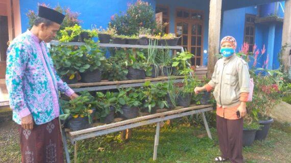 Ketika Sang Kader Lingkungan Hidup Aisyiyah Wilayah Utara Kunjungi Binaanya